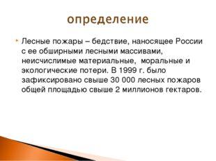 Лесные пожары – бедствие, наносящее России с ее обширными лесными массивами,