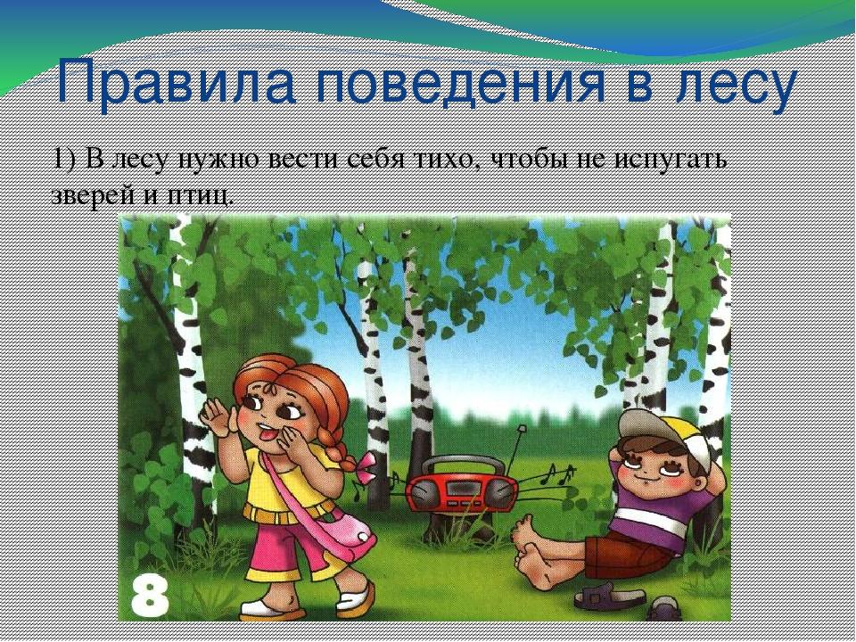 правила поведения в лесу фото изделия обычные жби