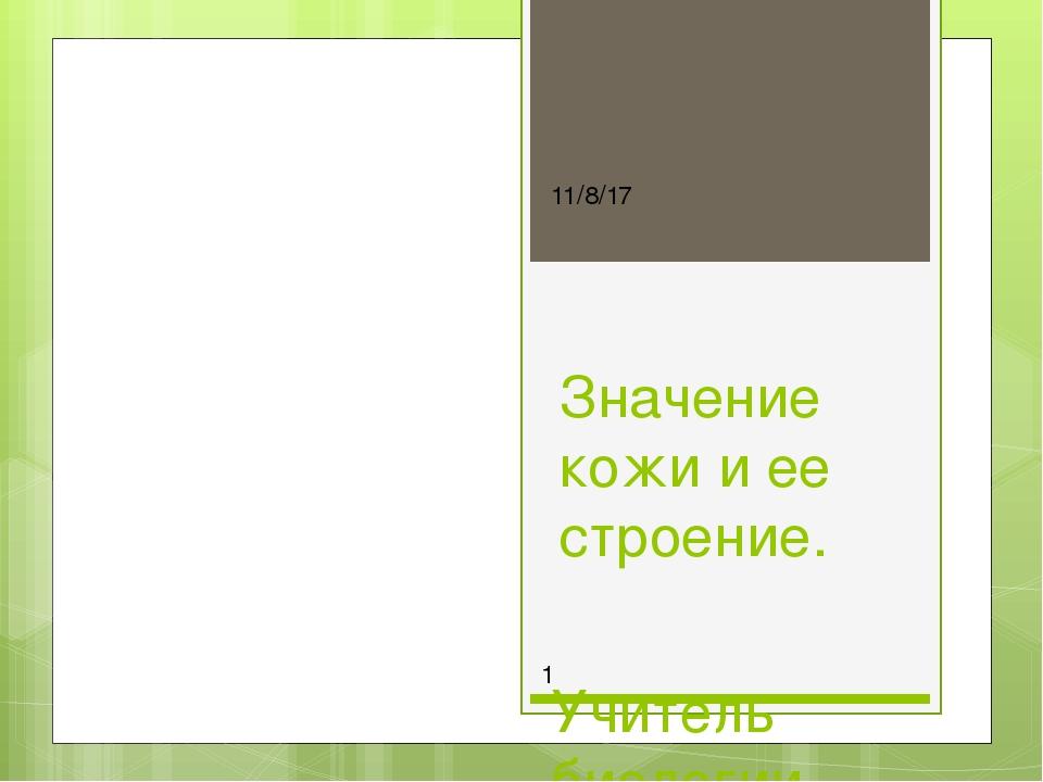 Значение кожи и ее строение. Учитель биологии Белина Анастасия Алексеевна