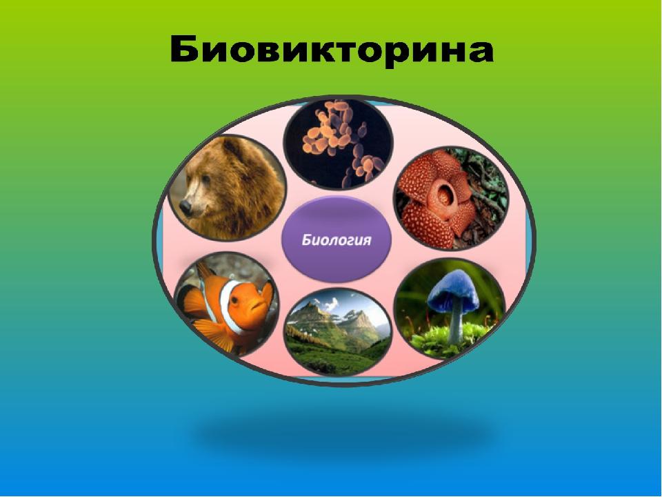 Биовикторина