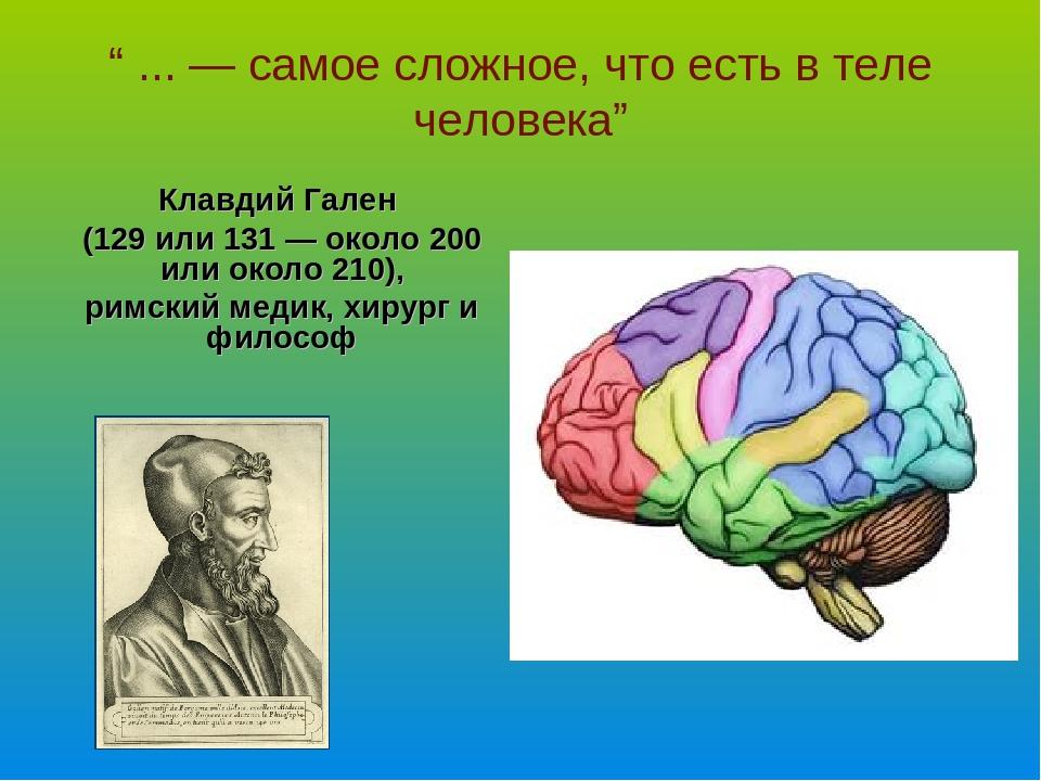 """""""... — самое сложное, что есть втеле человека"""" Клавдий Гален (129 или 131..."""