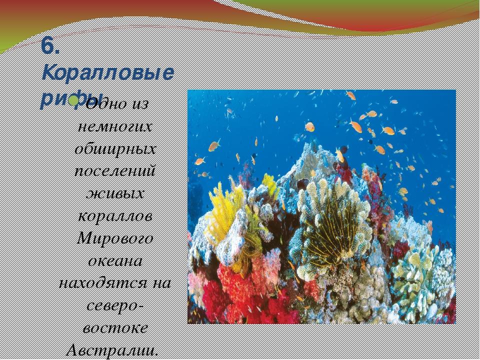 6. Коралловые рифы Одно из немногих обширных поселений живых кораллов Мировог...