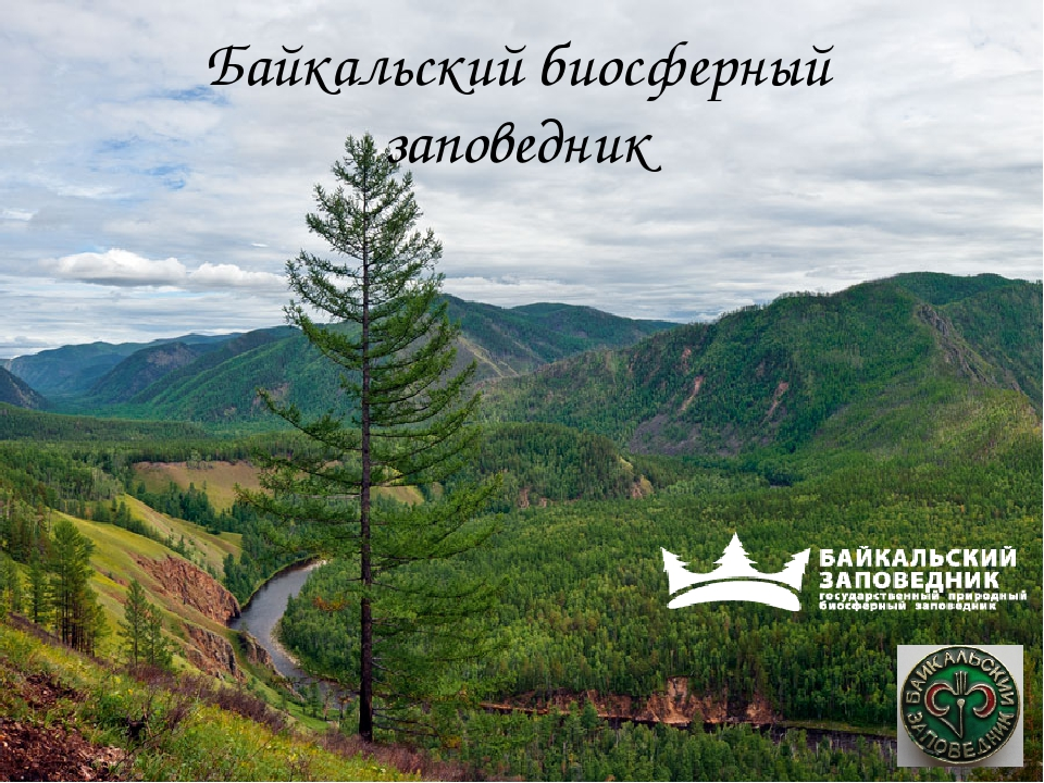 Байкальский биосферный заповедник