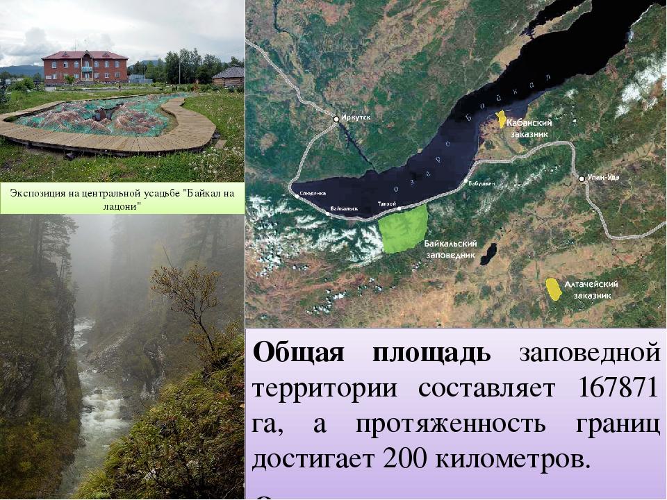Общая площадь заповедной территории составляет 167871 га, а протяженность гра...