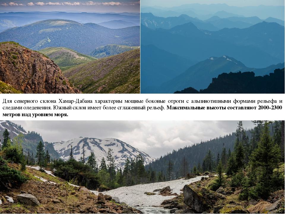 Для северного склона Хамар-Дабана характерны мощные боковые отроги с альпинот...
