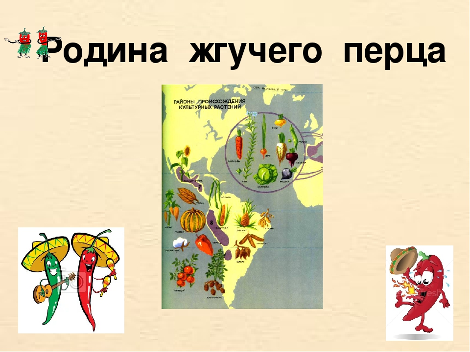 Родина жгучего перца