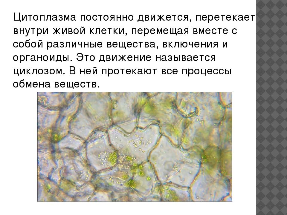 Список источников. https://otvet.mail.ru http://allrefs.net http://dic.academ...