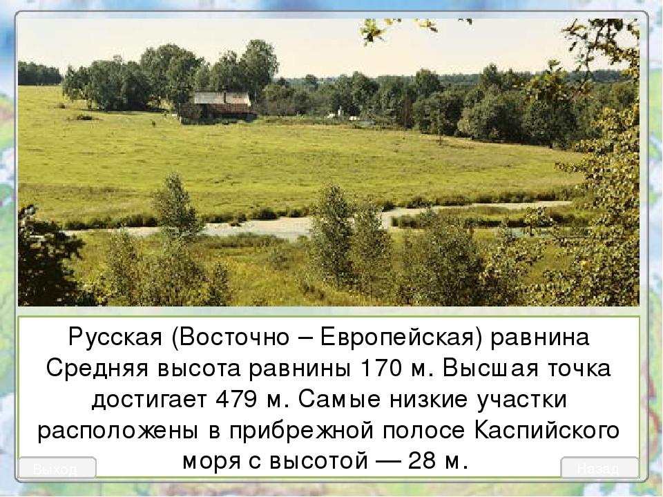 Русская (Восточно – Европейская) равнина Средняя высота равнины 170 м. Высшая...