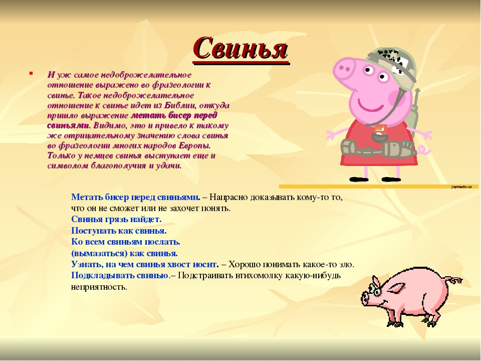 загадка по картинке со свиньями шапками и варежками картинка разума