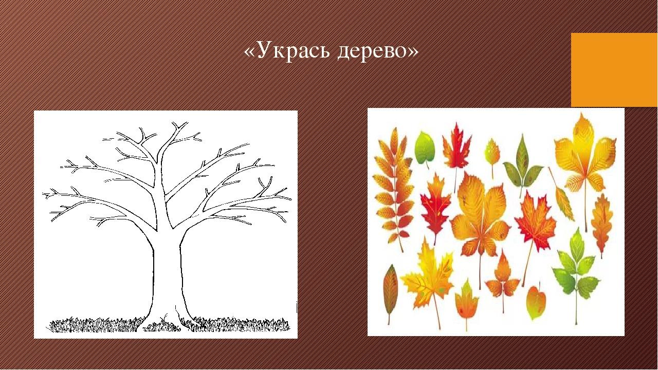 «Укрась дерево»