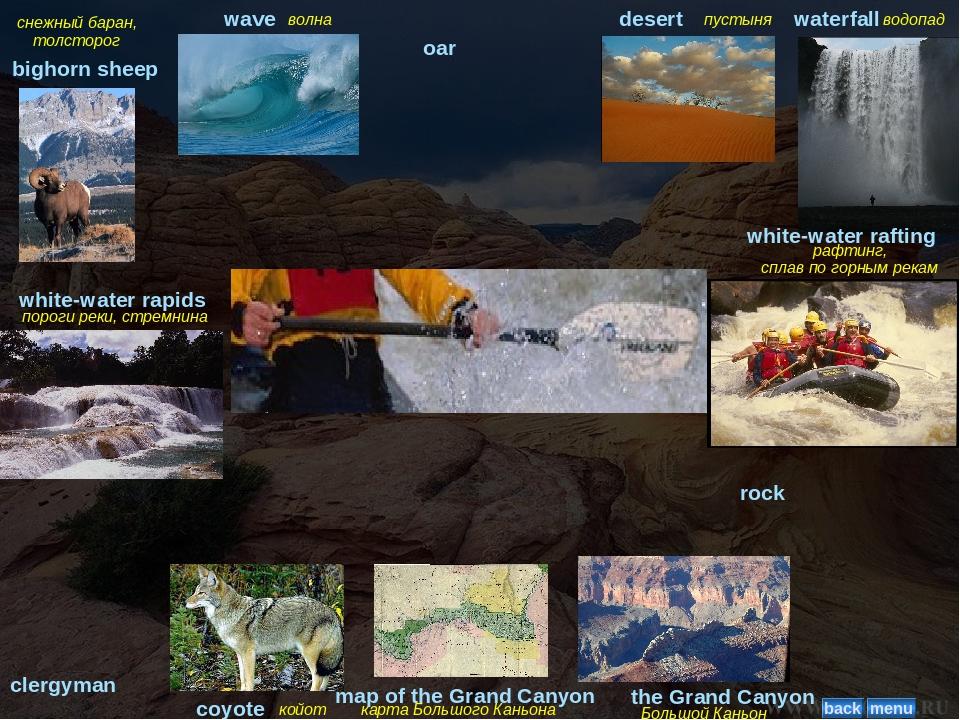 снежный баран, толсторог bighorn sheep волна wave oar пустыня desert водопад...