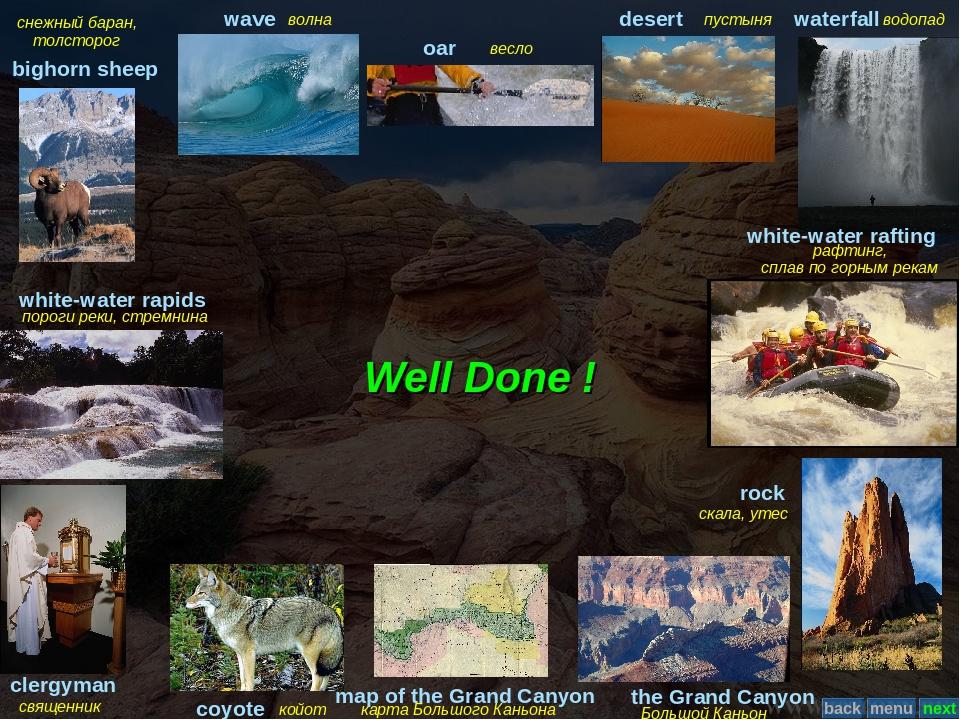 Well Done ! снежный баран, толсторог bighorn sheep волна wave весло oar пусты...