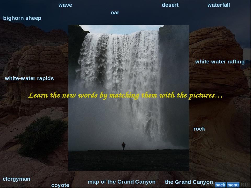 bighorn sheep wave oar desert waterfall coyote clergyman rock white-water rap...