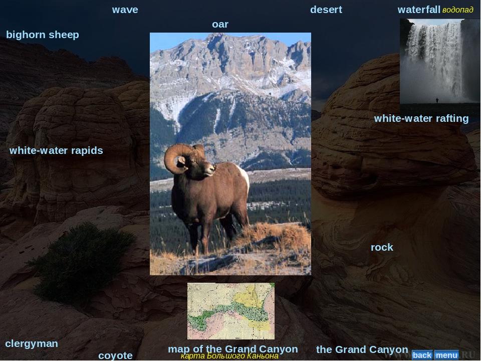 bighorn sheep wave oar desert водопад waterfall coyote clergyman карта Большо...