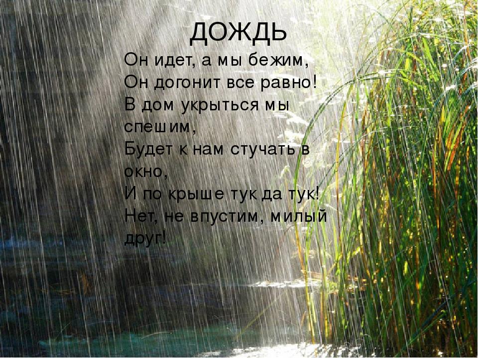 дождь стихи фото больше тираж хуже