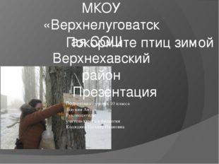 Покормите птиц зимой Подготовил : ученик 10 класса Баукин Антон Руководитедь: