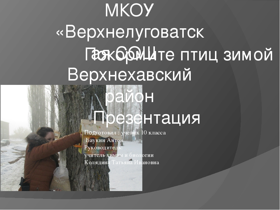 Покормите птиц зимой Подготовил : ученик 10 класса Баукин Антон Руководитедь:...