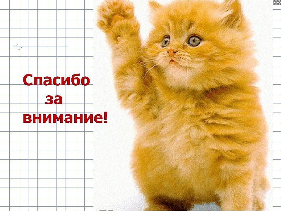 Спасибо за внимание картинки для презентации смешные котята, советскими открытками