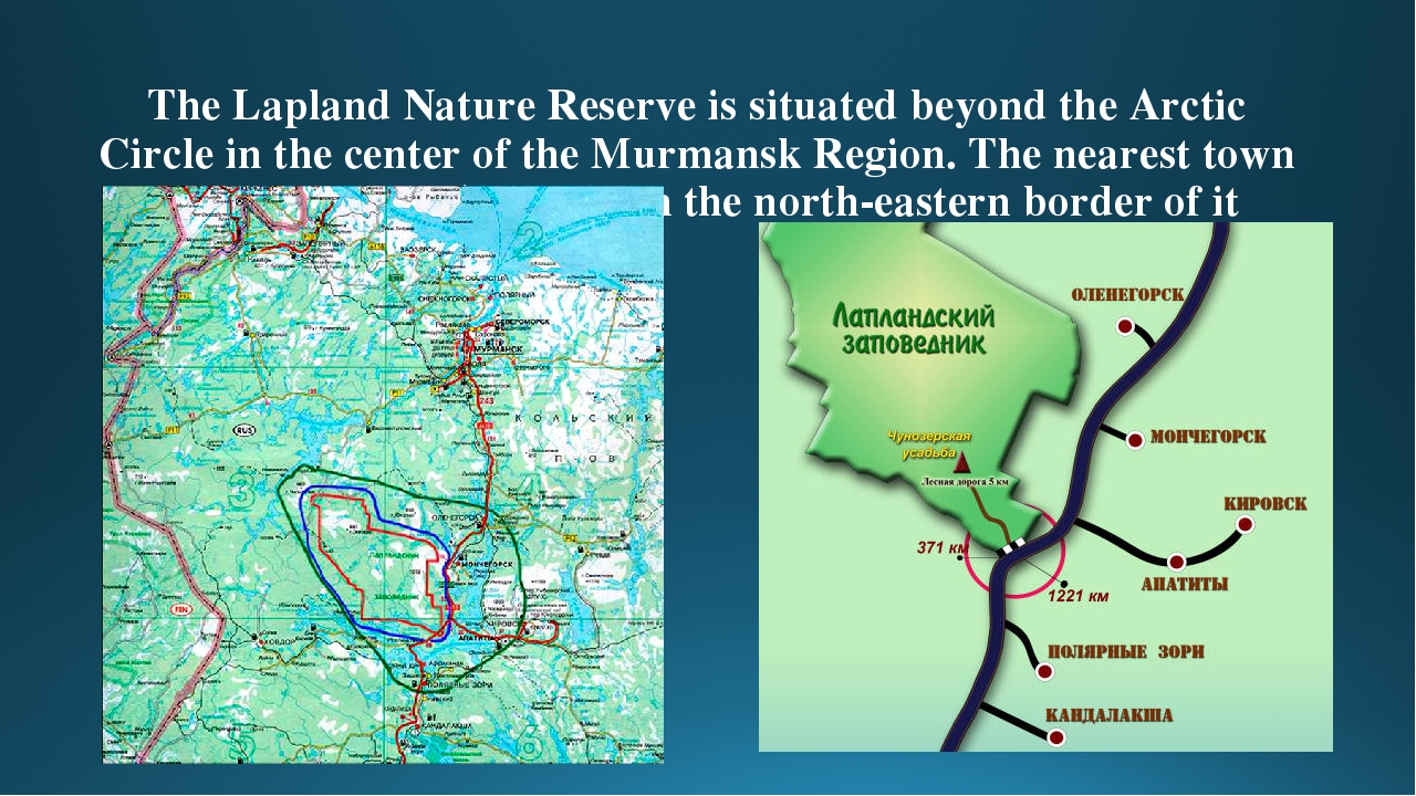 The reserve of Lapland in the Murmansk region: territory, plants and animals 51