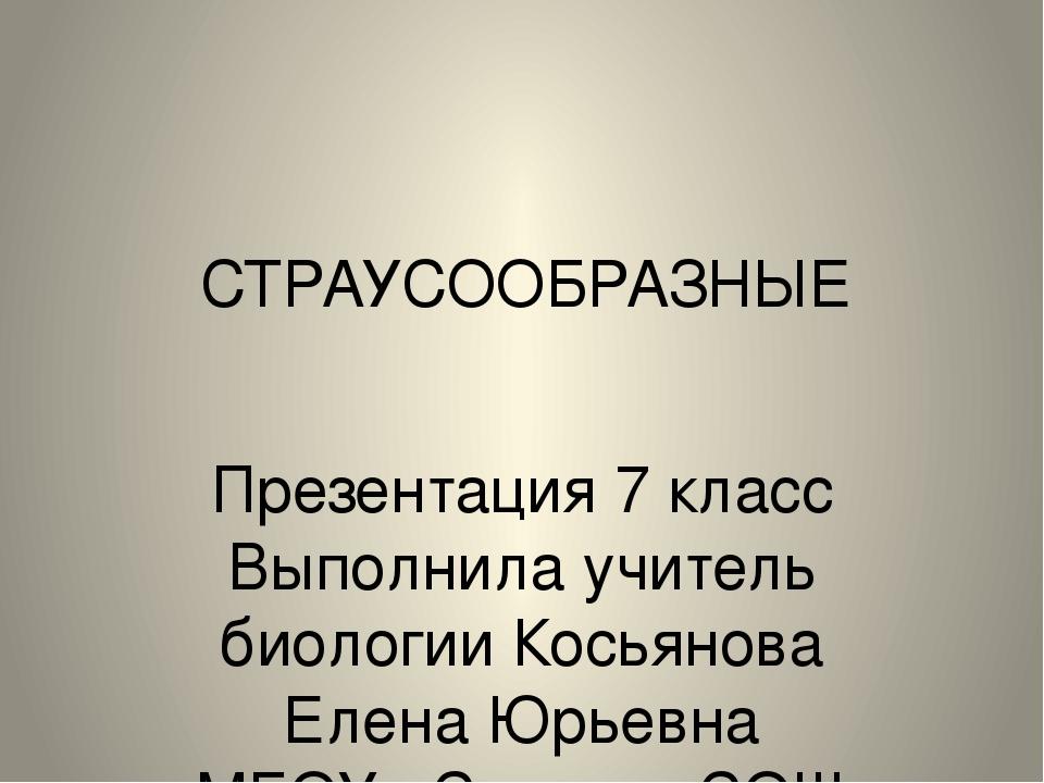СТРАУСООБРАЗНЫЕ Презентация 7 класс Выполнила учитель биологии Косьянова Елен...