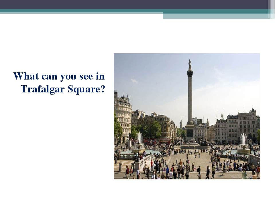 What can you see in Trafalgar Square?