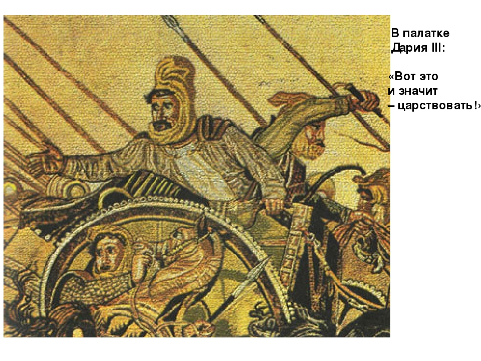 battle of gaugamala alexander the great essay If you enjoyed the battle of gaugamela 331 bc battle animation  another battle featuring alexander the great: battle of daras 530.