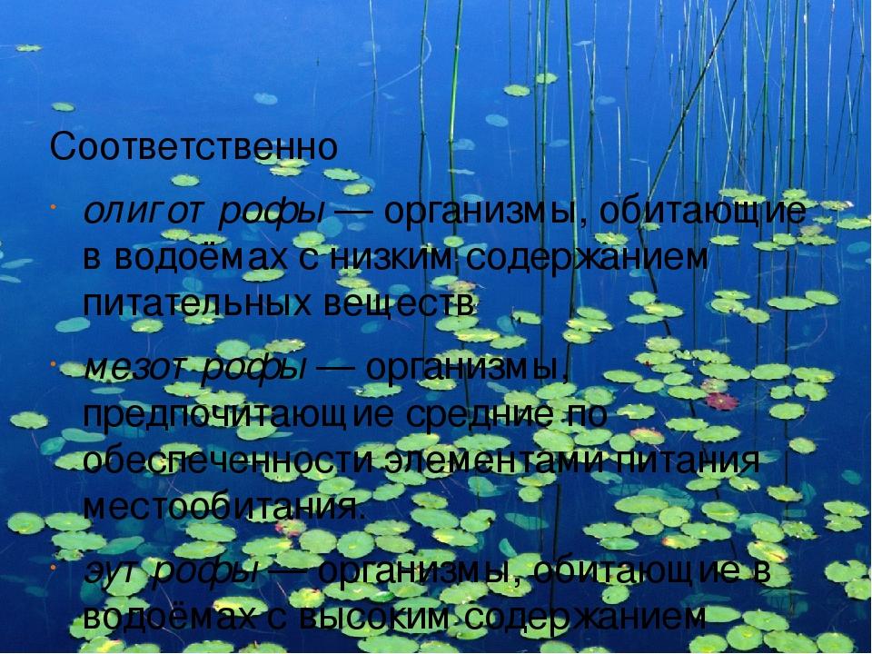 Соответственно олиготрофы — организмы, обитающие в водоёмах с низким содержан...