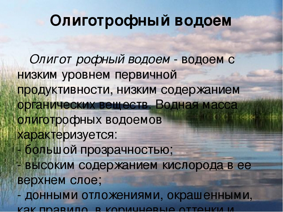 Олиготрофный водоем Олиготрофный водоем - водоем с низким уровнем первичной п...