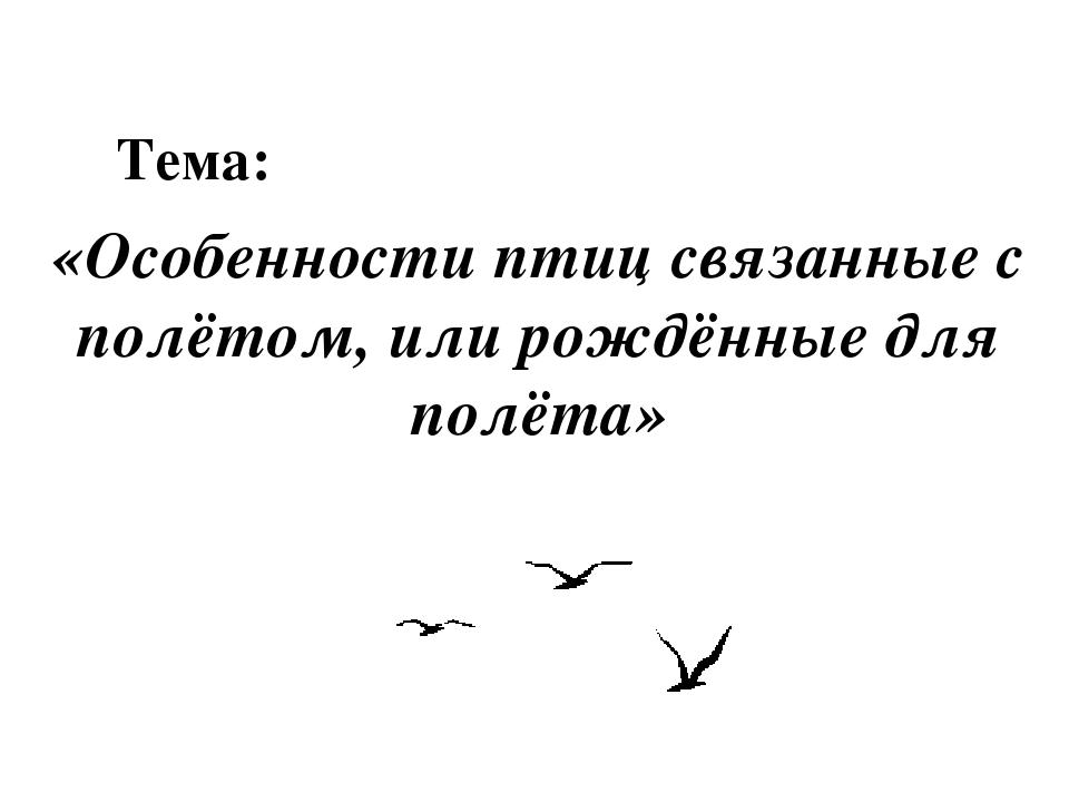 Тема: «Особенности птиц связанные с полётом, или рождённые для полёта»