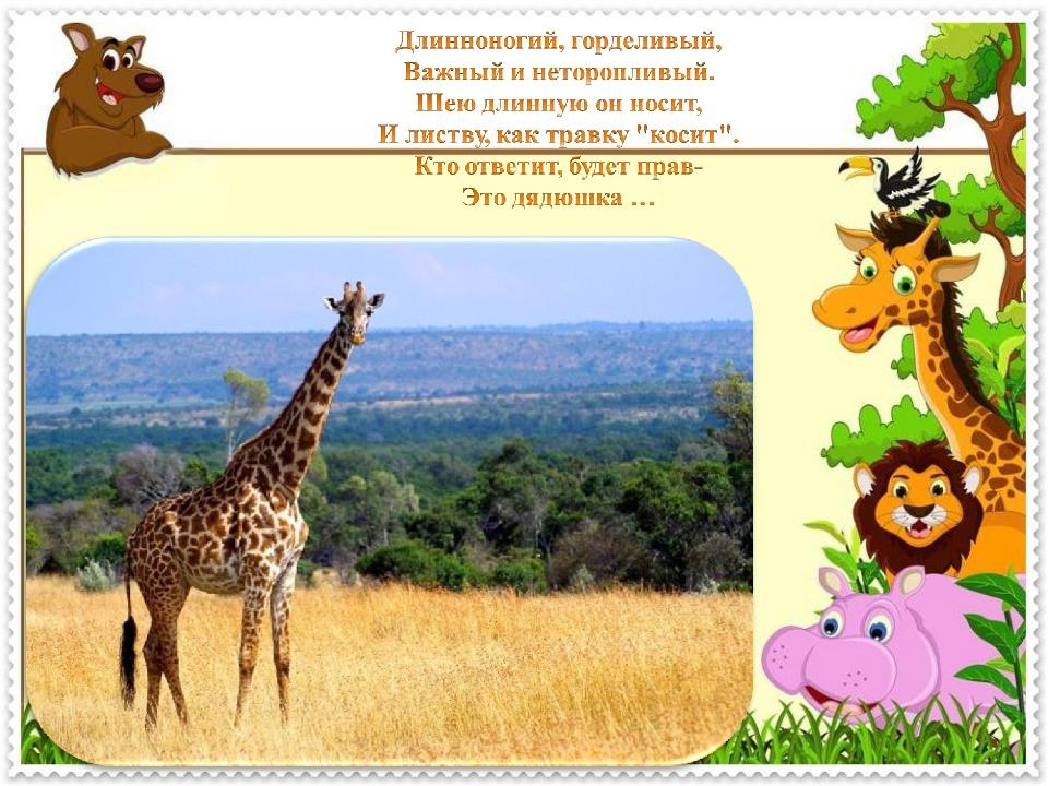 картинки для презентации животные жарких стран знаю