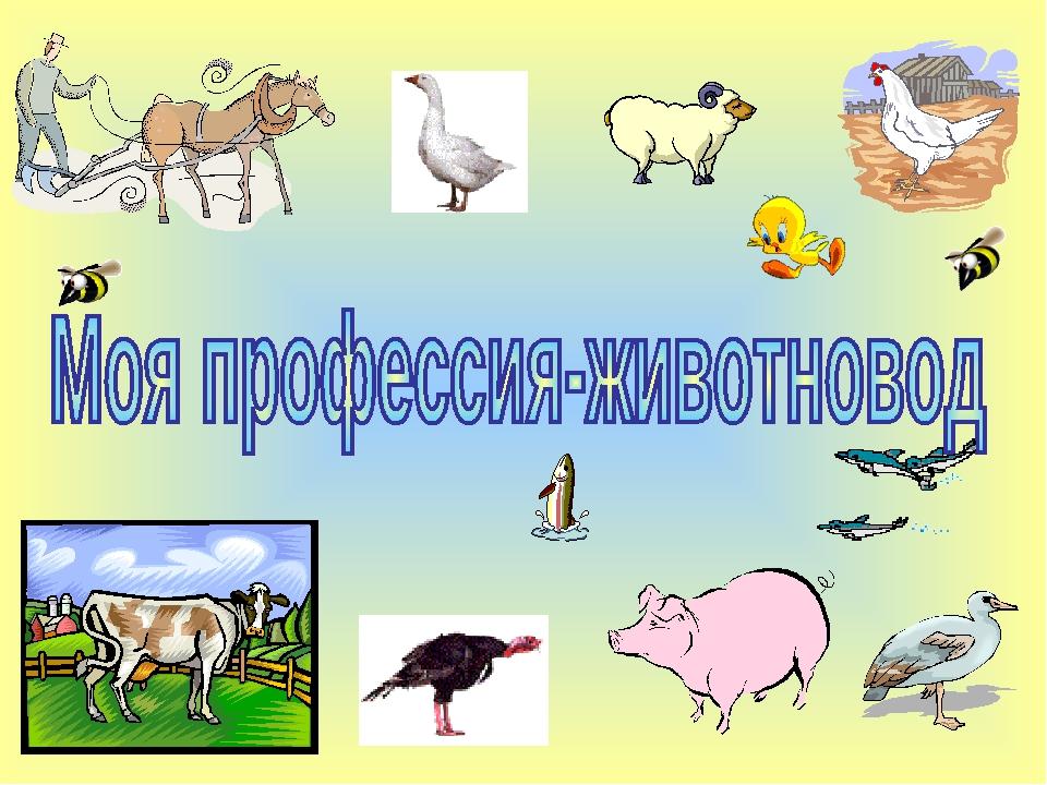 живет лошадями, картинки о профессии животновода потолки