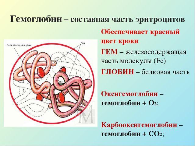 Состав крови урок биологии 8 класс драгомилов
