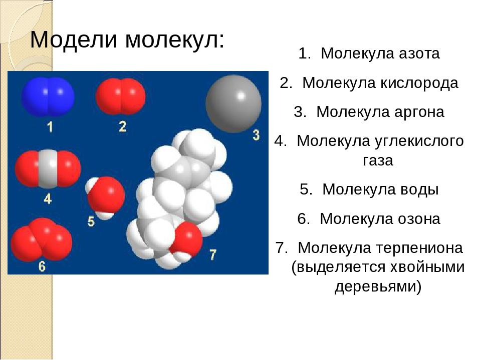 Гдз по природоведению 20 молекул углекислого газа 5 а
