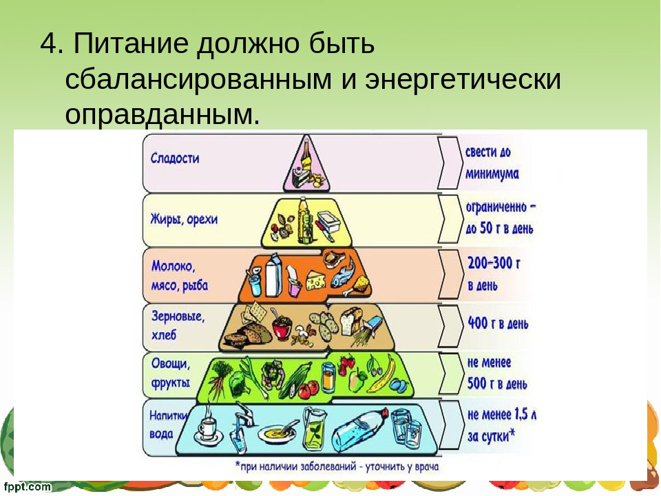 4. Питание должно быть сбалансированным и энергетически оправданным.