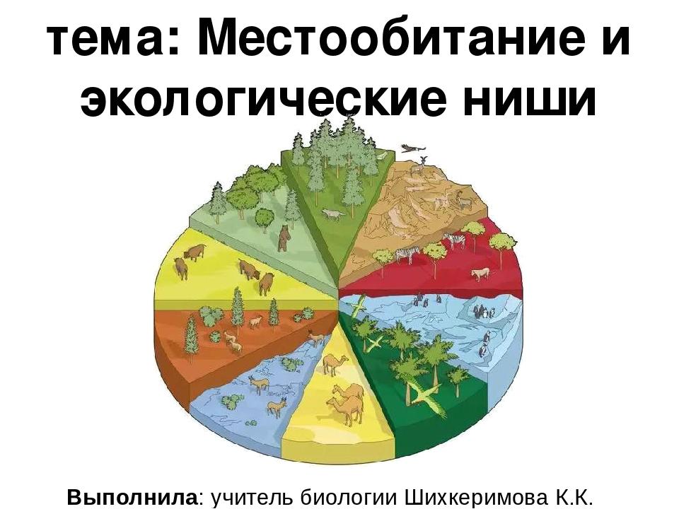 тема: Местообитание и экологические ниши Выполнила: учитель биологии Шихкерим...
