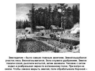 Земледелие – было самым главным занятием. Зимой вырубался участок леса. Весн