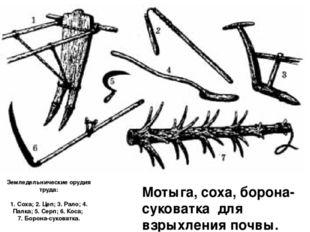 Земледельнические орудия труда: 1. Соха; 2. Цеп; 3. Рало; 4. Палка; 5. Серп;