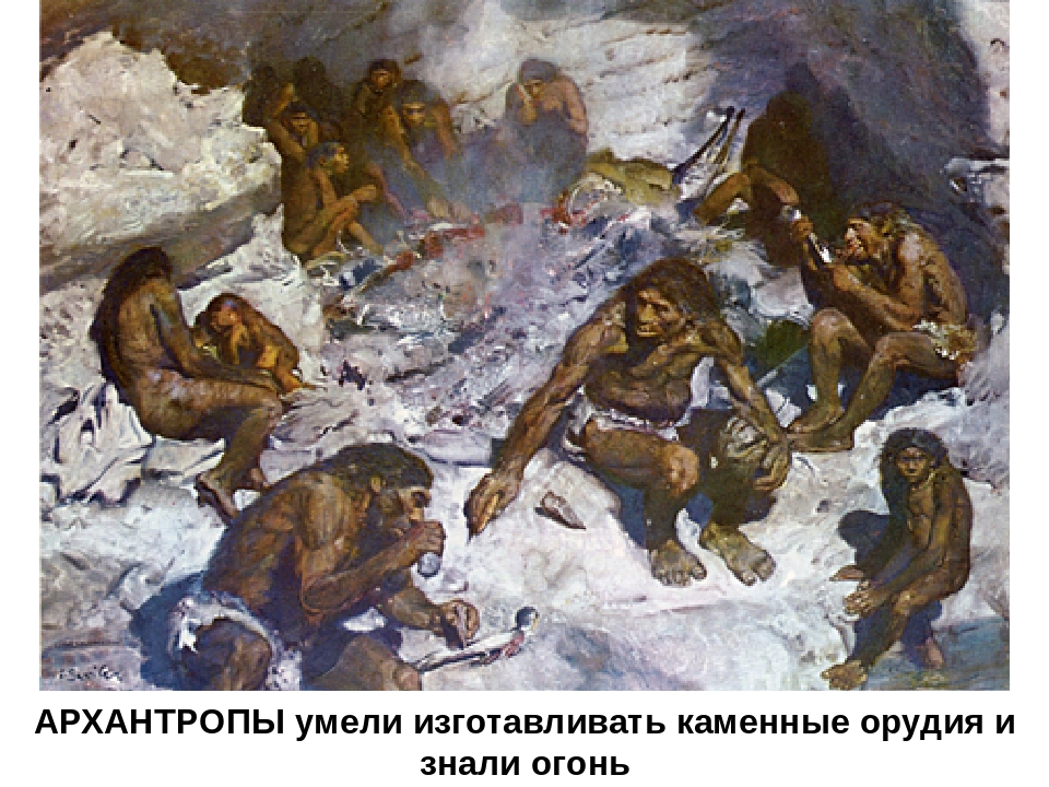 АРХАНТРОПЫ умели изготавливать каменные орудия и знали огонь