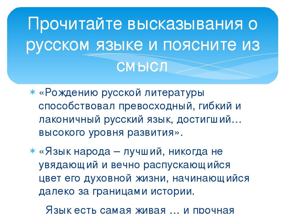 «Рождению русской литературы способствовал превосходный, гибкий и лаконичный...
