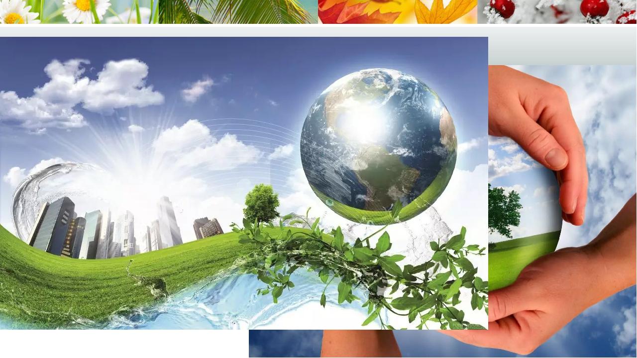 Экологические картинки для презентации