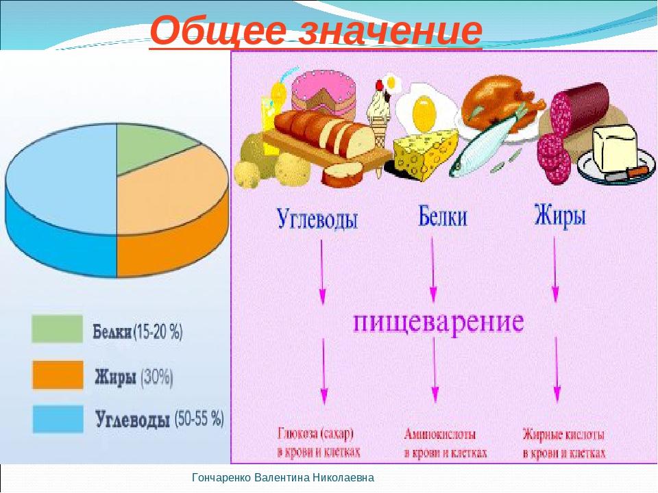 Доклад на тему жиры белки и углеводы кратко 5337