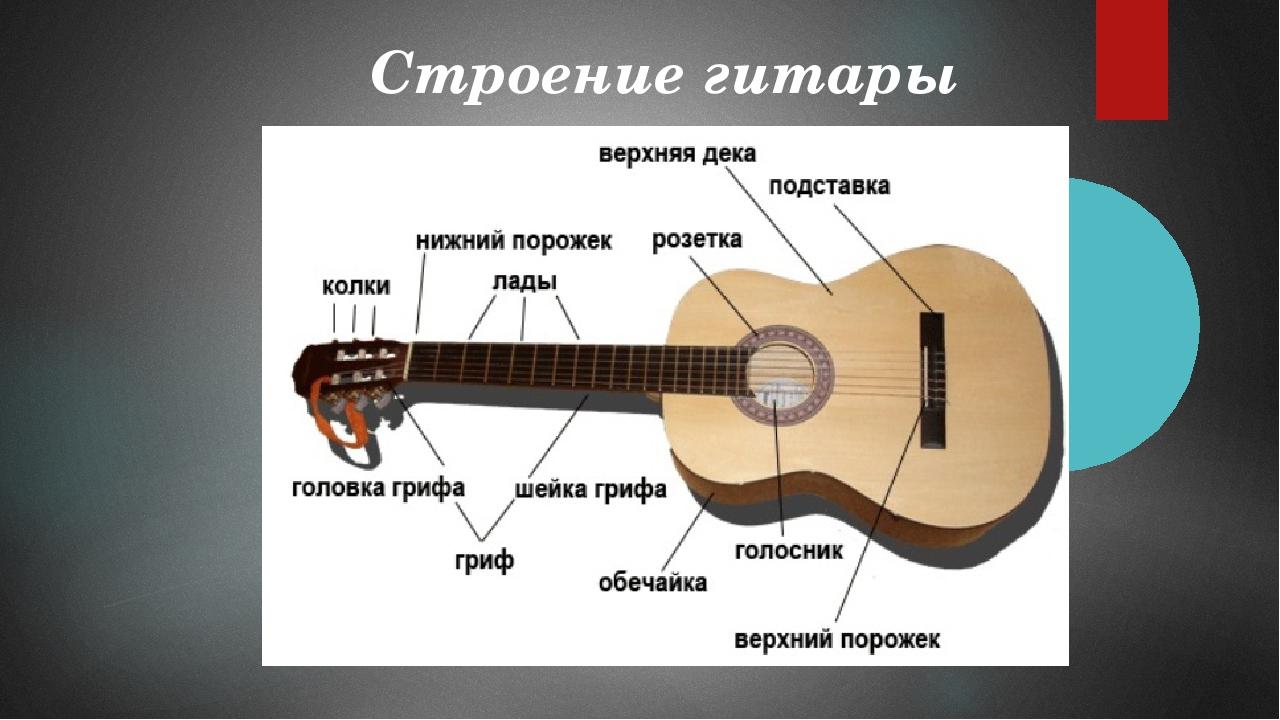 схема строения гитары волшебных