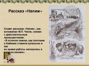 Сюжет рассказа «Налим», как вспоминал М.П. Чехов, связан с действительным про
