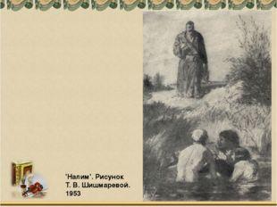 'Налим'. Рисунок Т. В. Шишмаревой. 1953