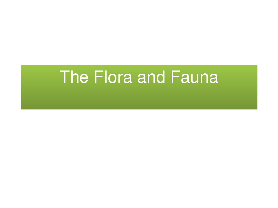 The Flora and Fauna