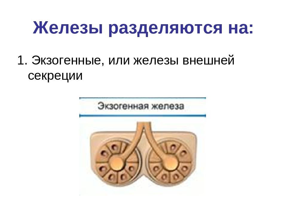 Реферат на тему железы внешней и внутренней секреции 8732
