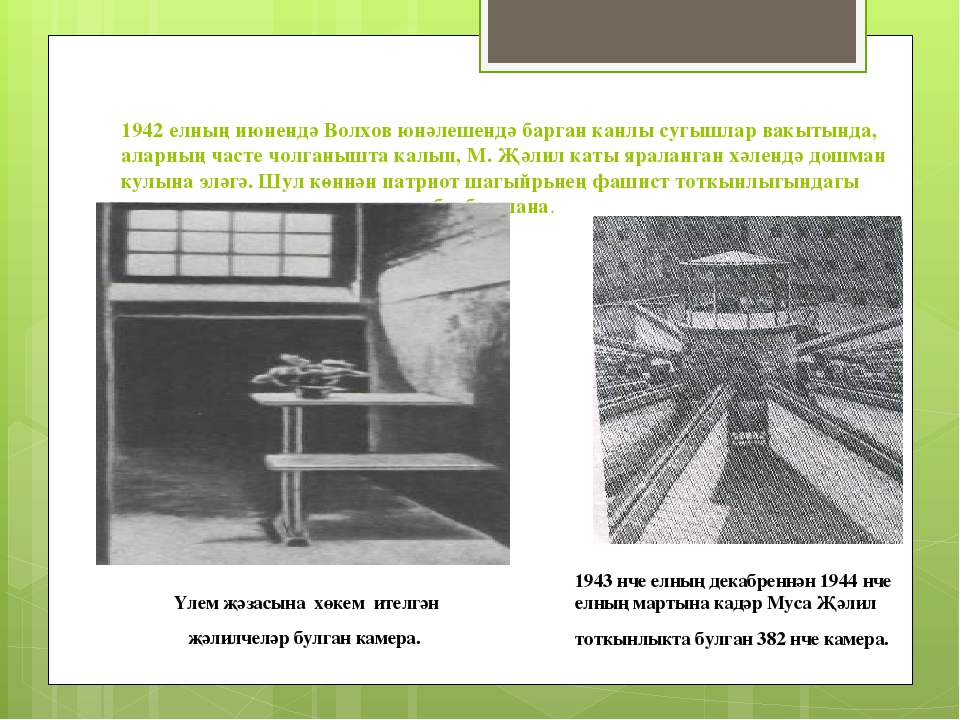 1942 елның июнендә Волхов юнәлешендә барган канлы сугышлар вакытында, аларның...