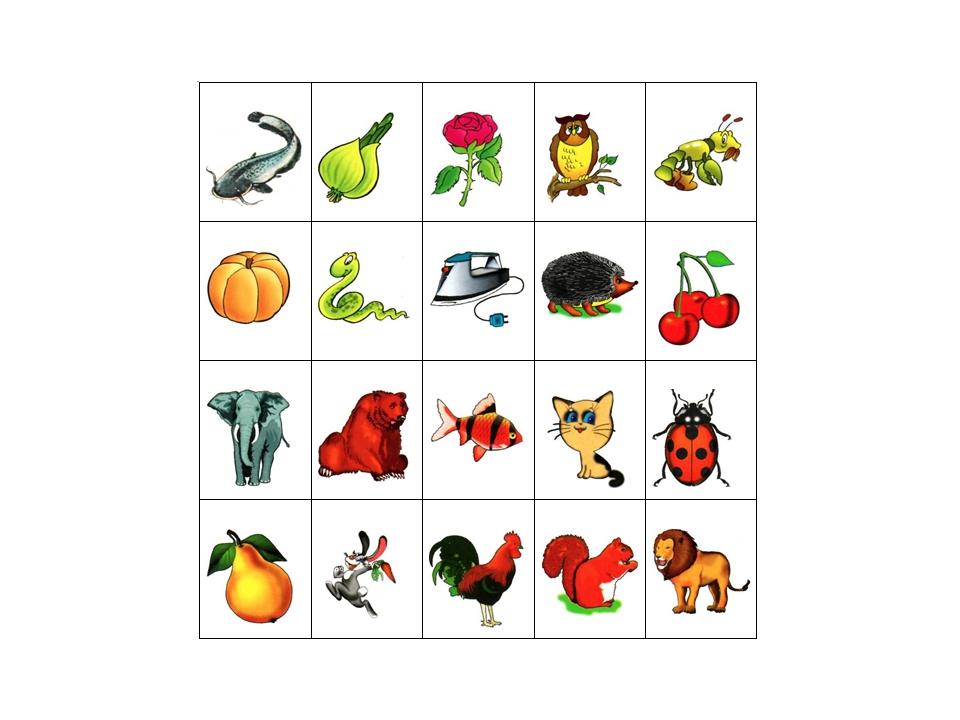 картинки для карточек на группы звуков цветок цветочки