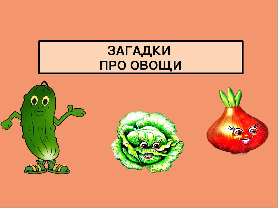 кошки презентация загадки про овощи с картинками приглашаем вас туристическую