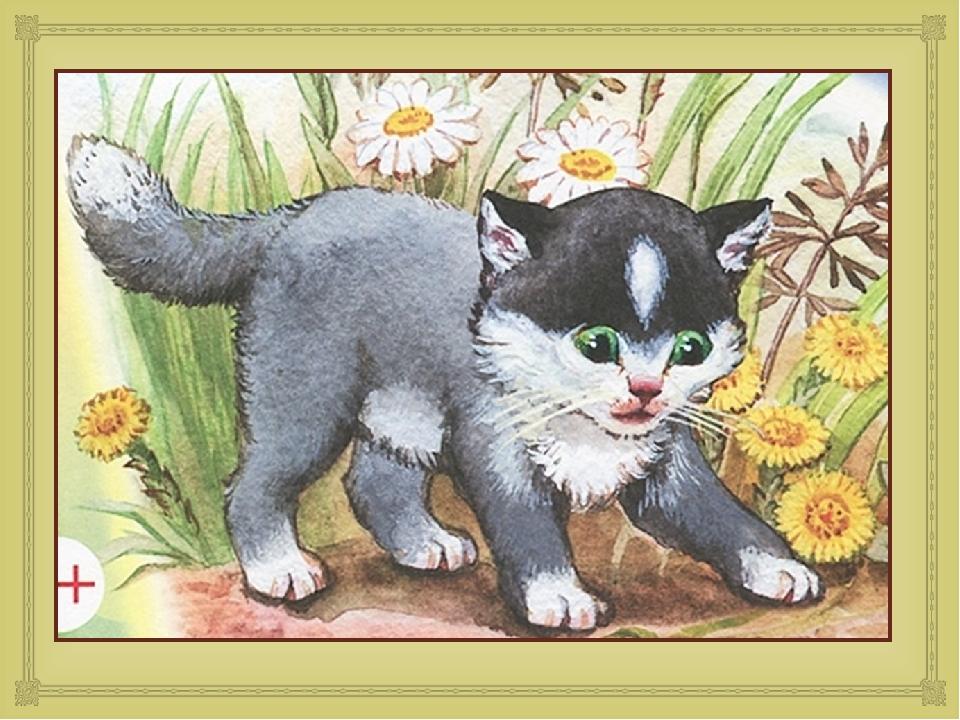 нарисовать рисунок к рассказу котенок толстого